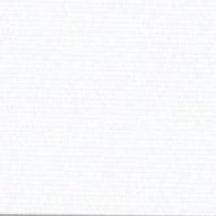 Extra White - Regatta Roller Blackout Shade Swatch